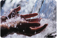 Water management practices+image