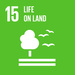 SDG15: Life on Land+image