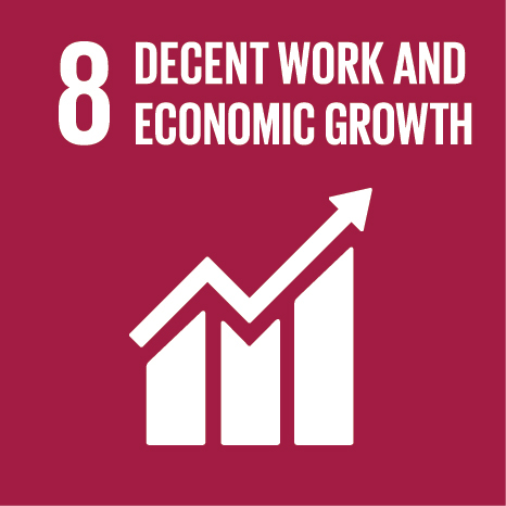 SDG8: Decent Work and Economic Growth (universities)+Image