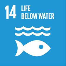 SDG14: Life Below Water (universities)+Image