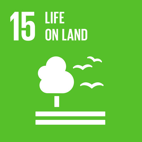 SDG15: Life on Land (universities)+Image