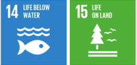 PROJECT FOUR (4) - UW ACCY111: SDG 14 - Life Below Water & SDG15 - Life on Land+Image