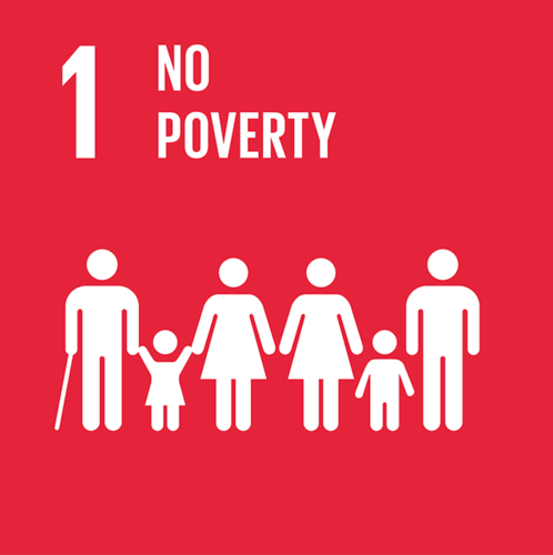 SDG1: No Poverty+image