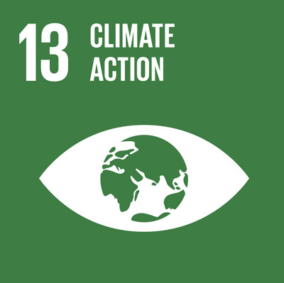 SDG13: Climate Action+image