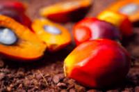 WWF Palm Oil Scorecard 2013+image
