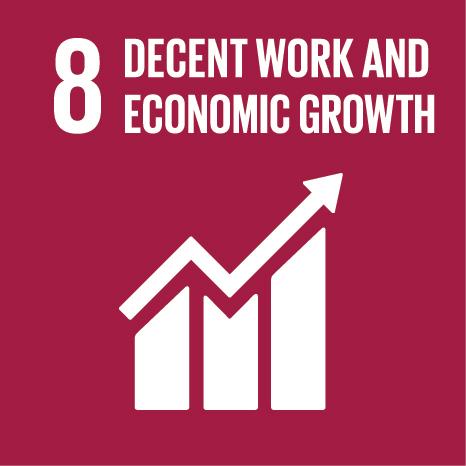 SDG8: Decent Work and Economic Growth (universities)+Image