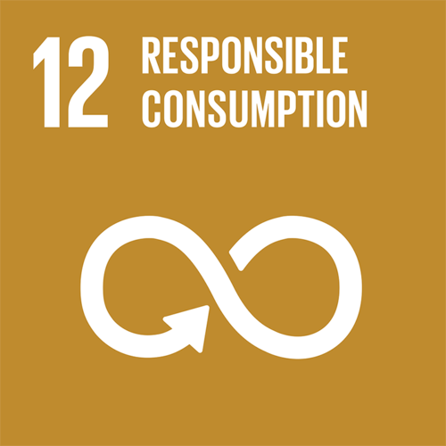 SDG12: Responsible Consumption and Production (universities)+Image