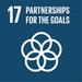 SDG17: Partnerships for the Goals (universities)+Image