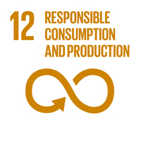 Embedding the SDGs into curriculum - SDG12: Responsible Consumption and Production+Image