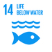 Embedding the SDGs into curriculum - SDG14: Life Below Water+Image