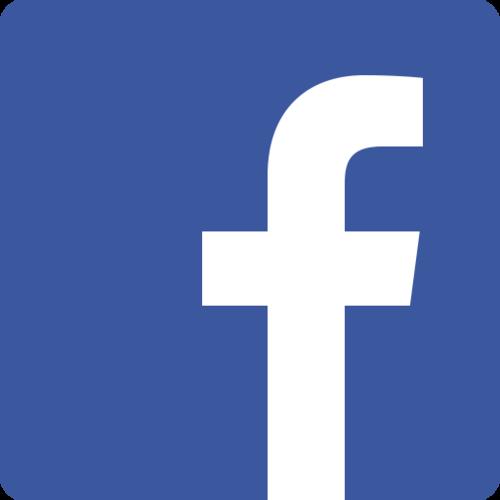 Facebook Inc.+image